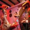 Le seduzioni del Flamenco a Madrid