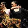 Il Flamenco Festival