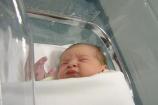 Sesso del bebè gia alla seconda settimana! Scoperta spagnola